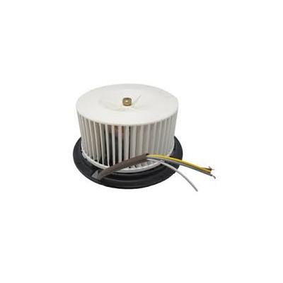 Motor 220v-50hz 3v (ro) derecho